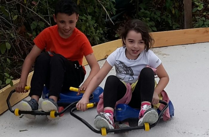 Roller racer